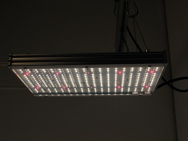Jacks-LED-Grow-Light-V2-115w-samsung-lm301b-osram-oslon-sll-main-led-horticulture